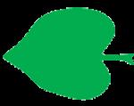 Leaf Shape Cordate